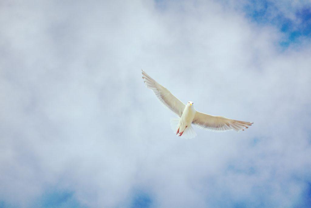 Symbolbild: Heiliger Geist